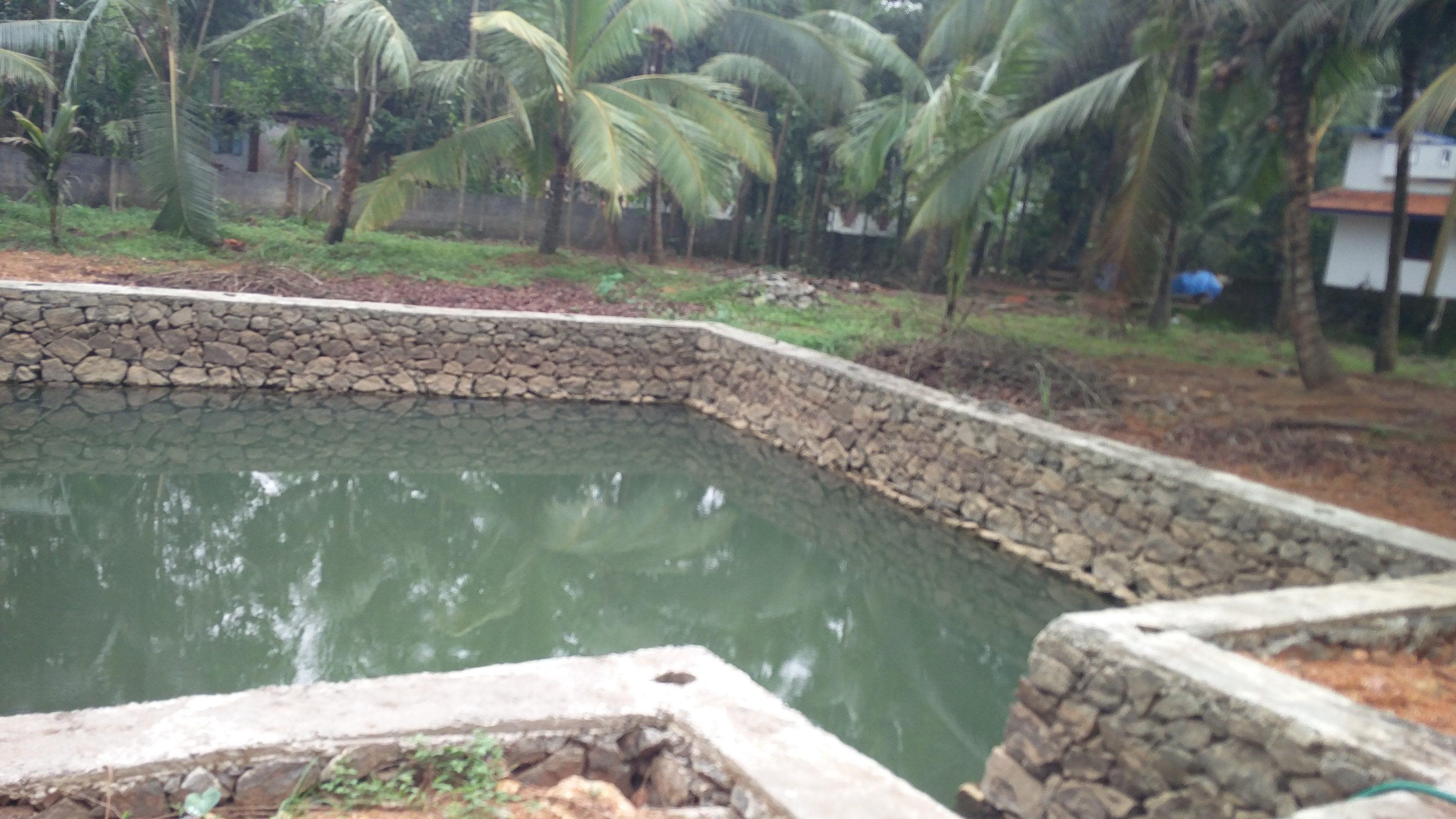 Aquaculture Fish Farming Solutions in Kerala