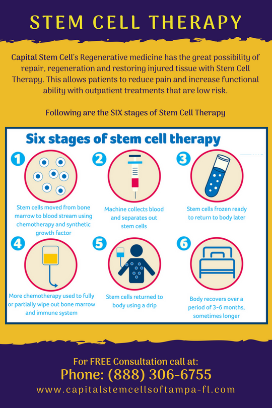 Get to Know About Simple, yet effective Six Stages of Stem