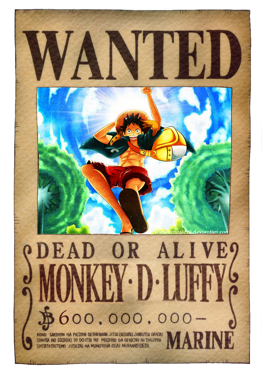 Monkey D Luffy Age 15 First Bounty Fiction Whimsical