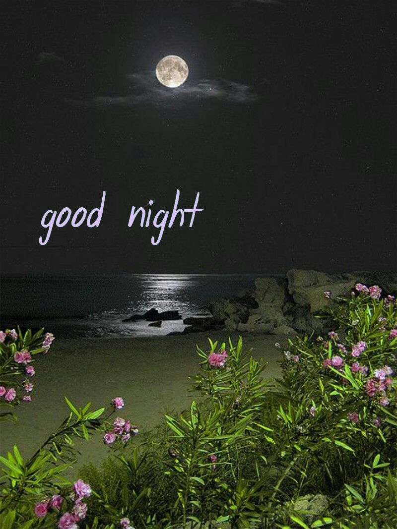 Pin by merle b on good night pinterest messages night quotes night messages morning messages phone messages night quotes morning quotes best business cards morning pictures nighty night good night wishes magicingreecefo Image collections