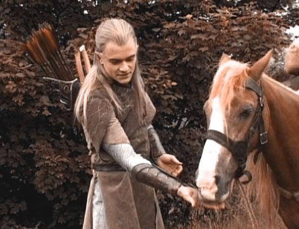 Idea by Natalie Bujakowski on Middle-Earth   Legolas, Lord ...