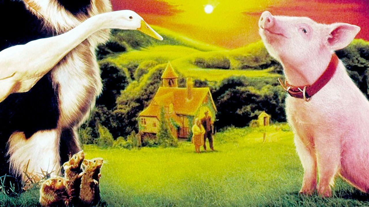 Filme Babe O Porquinho Atrapalhado Babe O Porquinho Atrapalhado Piada De Loira Babe