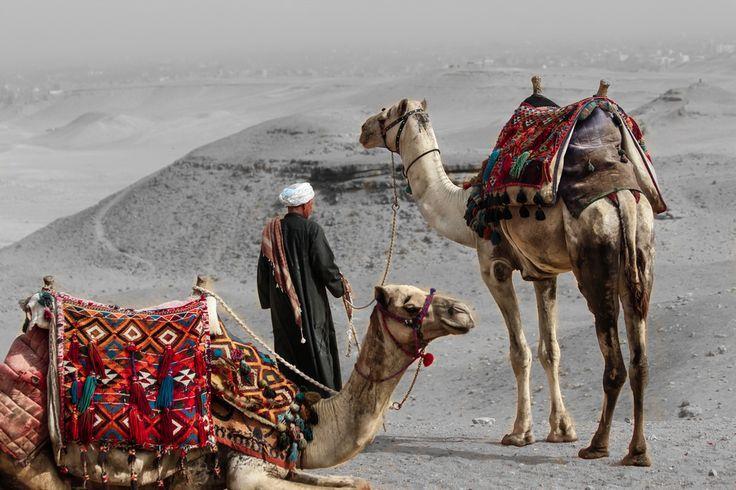 Excursiones En Egipto El Desierto De Egipto Http Www Espanol Maydoumtravel Com Paquetes De Viajes Cl C3 A1sicos En Egipt Egipto Viajes Civilización Egipcia