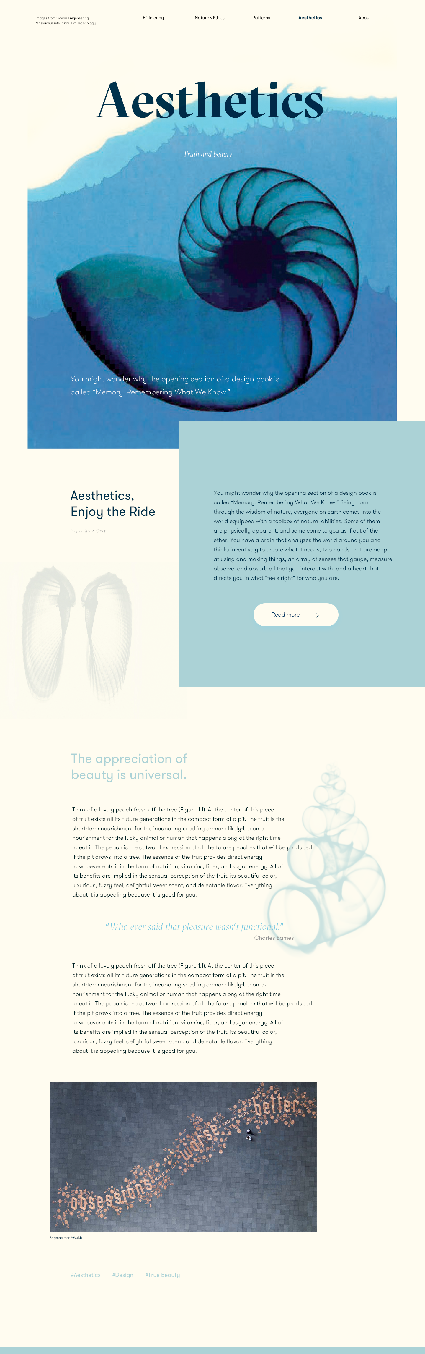Aesthetic Landing1 Fun Website Design Web Design Website Design