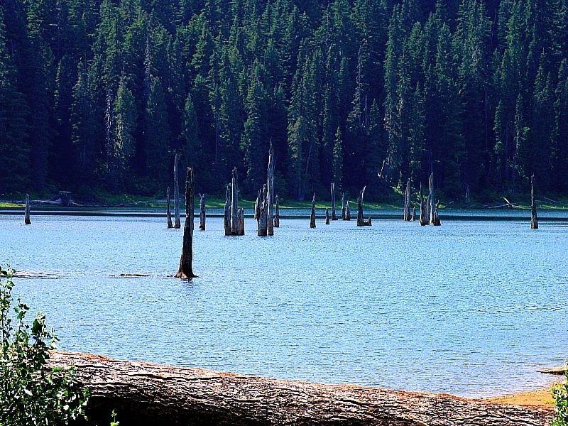 Goose Lake Wa Goose Lake | Be...