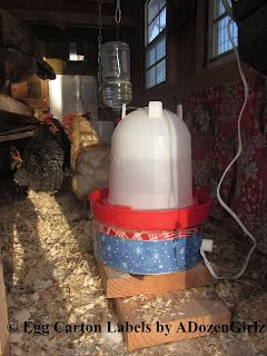 Diy Chicken Waterer Heater Under 10 10 Minutes In 3 Steps With Images Chicken Waterer Diy Chicken Waterer Chickens Backyard