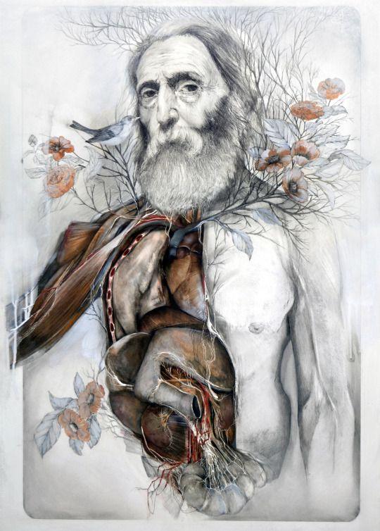 Pin de Elizabeth Cowherd en Art | Pinterest | Ilustración médica ...