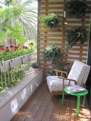 Photo of המרפסת החדשה, עם סרגל עץ לעציצי קיסוס ( צילום…