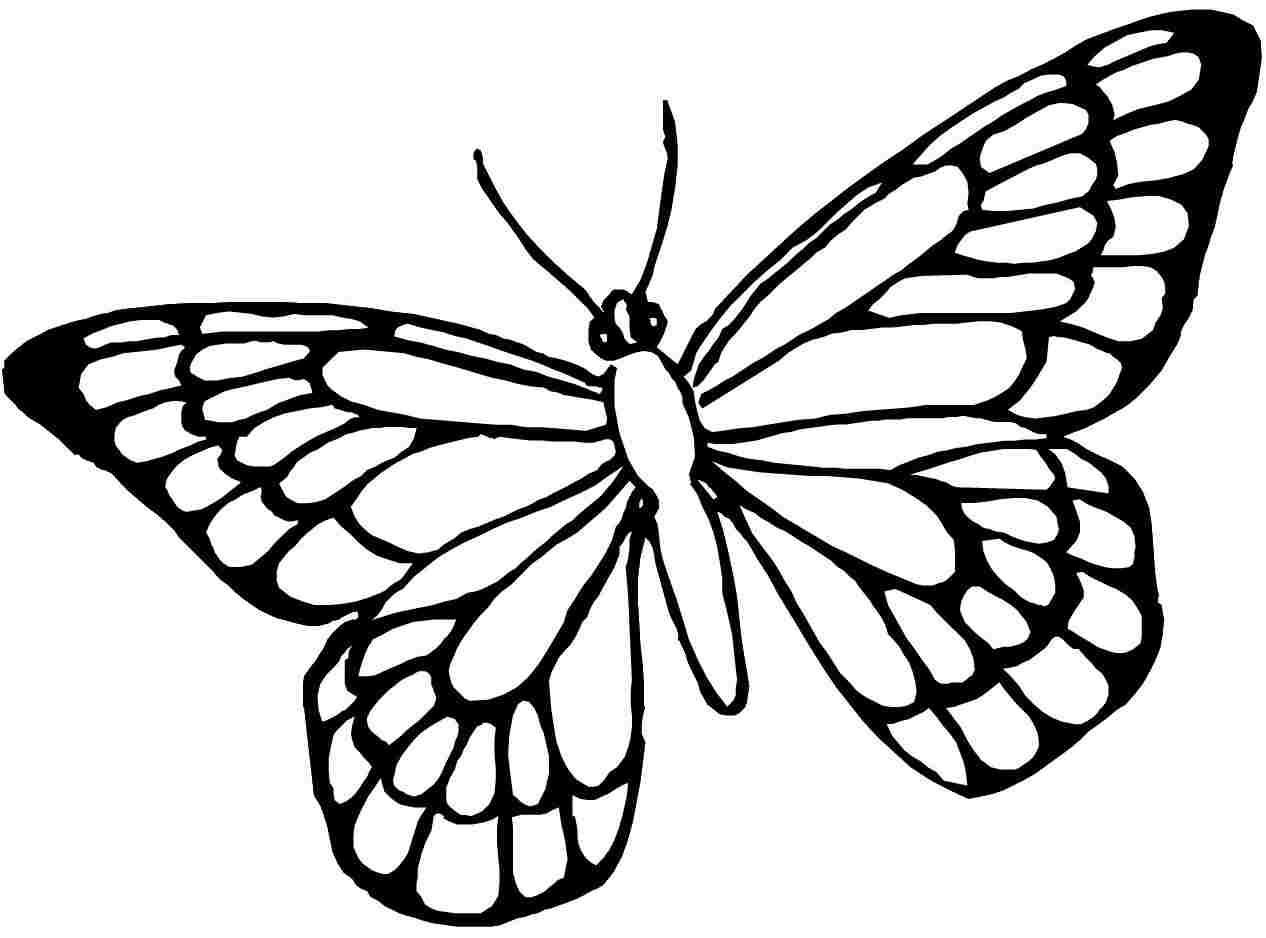 38 Coloring Page Of Butterfly Butterfly Coloring Page Butterfly Printable Butterfly Clip Art [ 938 x 1266 Pixel ]