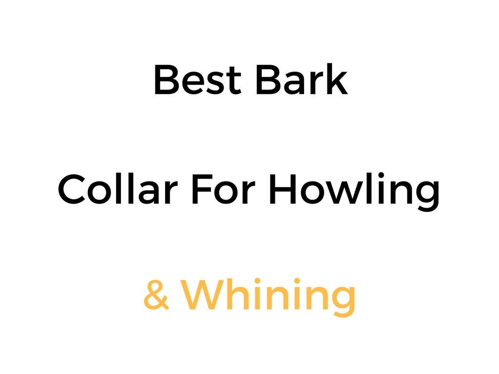 Best Bark Collar For Howling Amp Whining Reviews Amp Buyer S