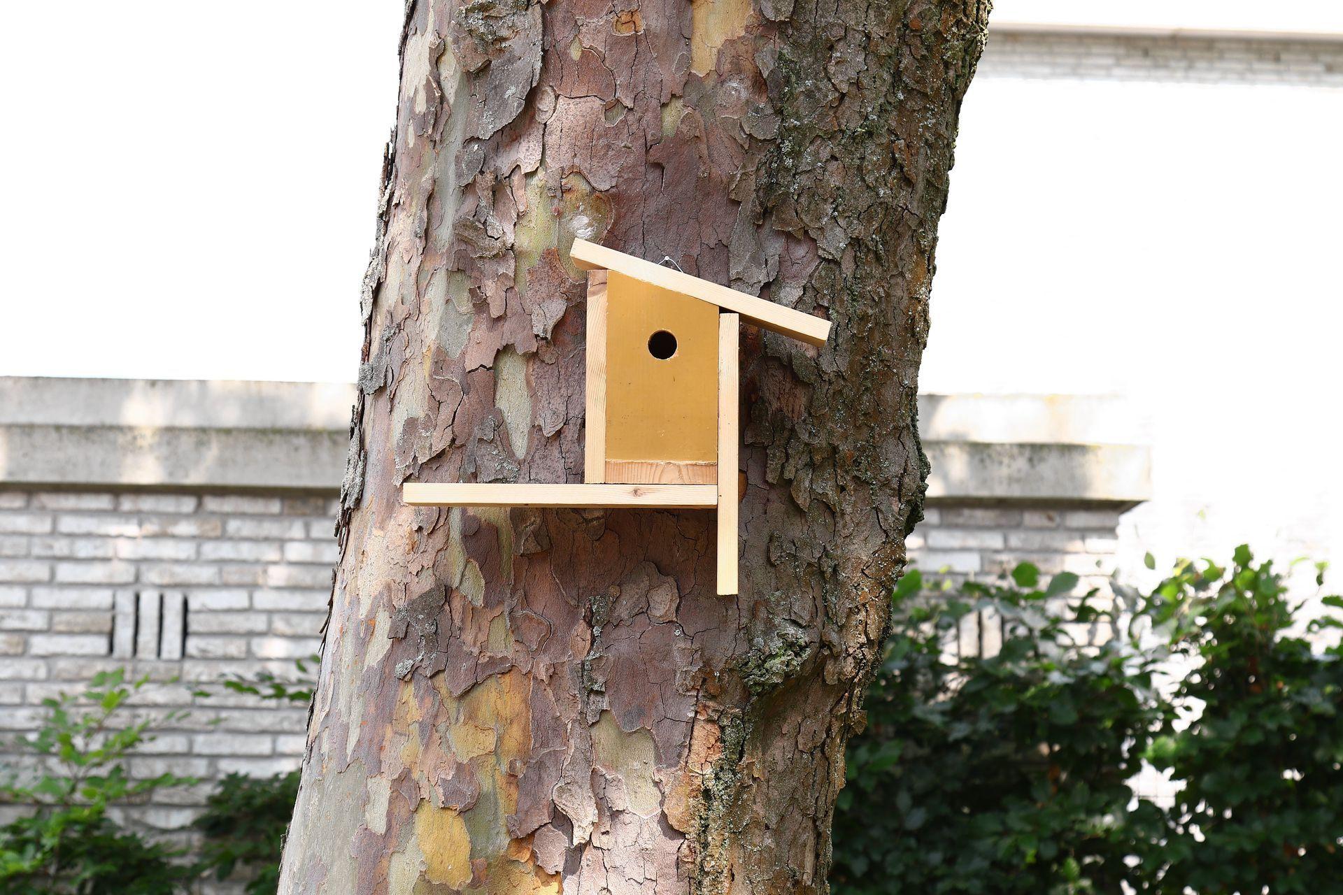 Vogelhuisje Piet Hein Eeks / Mondriaan