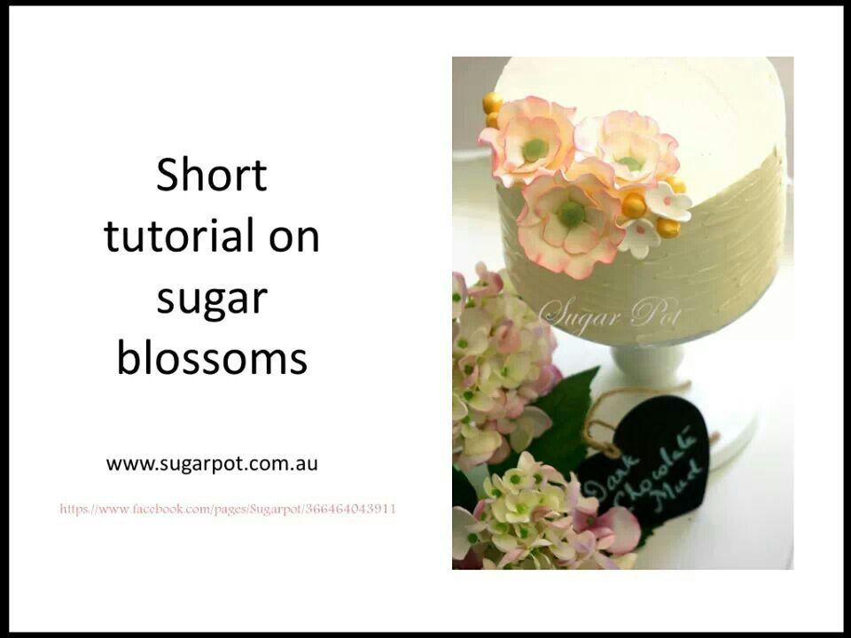Blossoms tutorial