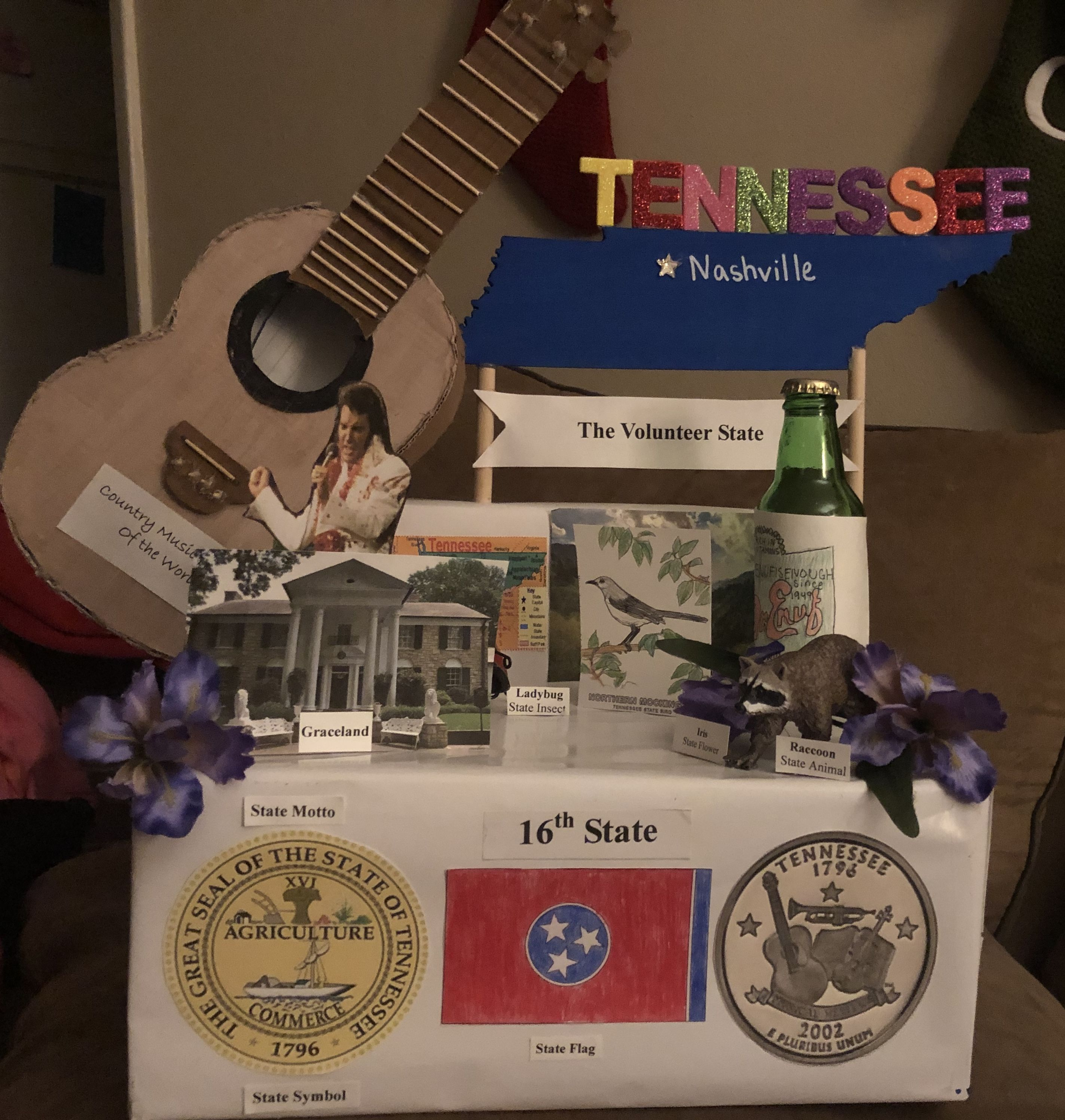Tennessee State Project In