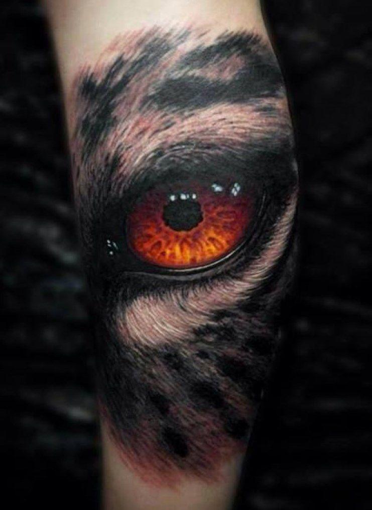 Wolf Eye Tattoo : tattoo, Tattoos, TattooFan, Tattoo,, Tiger, Tattoo