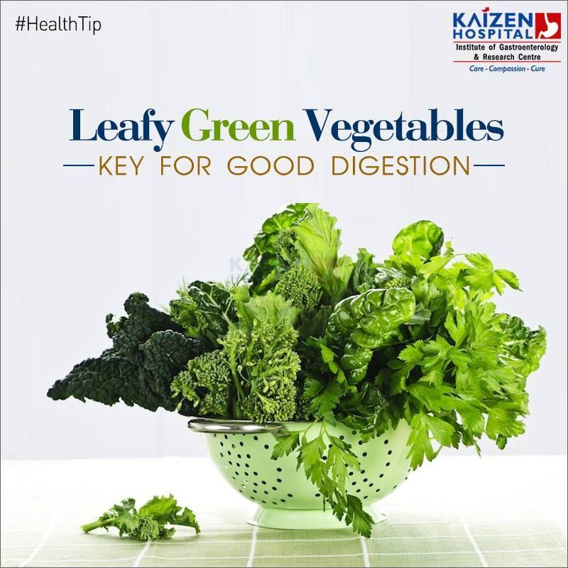Healthtip Leafy Green Vegetables Key For Good Digestion Leafy