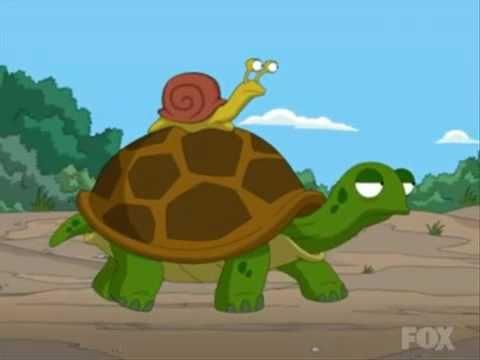 ▶ TAz FG Picks - Snail on a Turtle's Back - YouTube