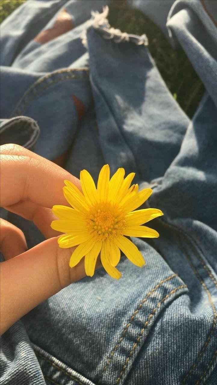 Pin by ☆𝒥𝒟𝒶𝓃𝒾ℯ𝓁𝓁ℯ☆ on αєѕτнєτιϲ (With images) Tumblr yellow