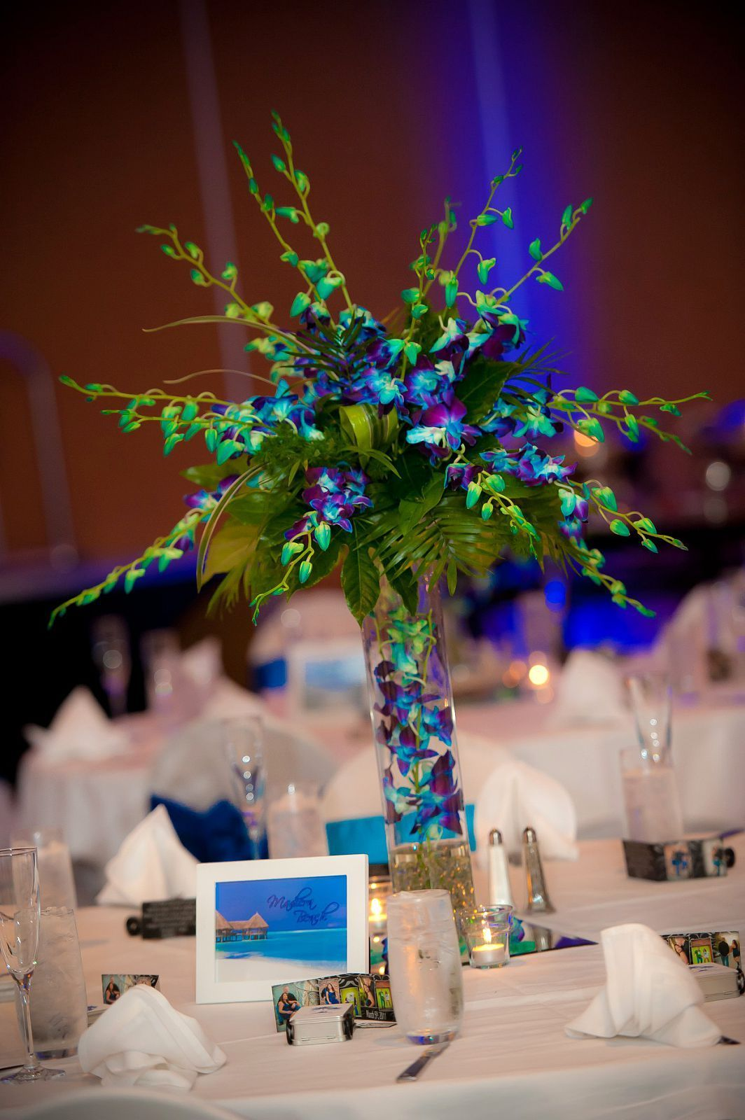 Blue dendrobium orchids center piece and instead of table numbers i