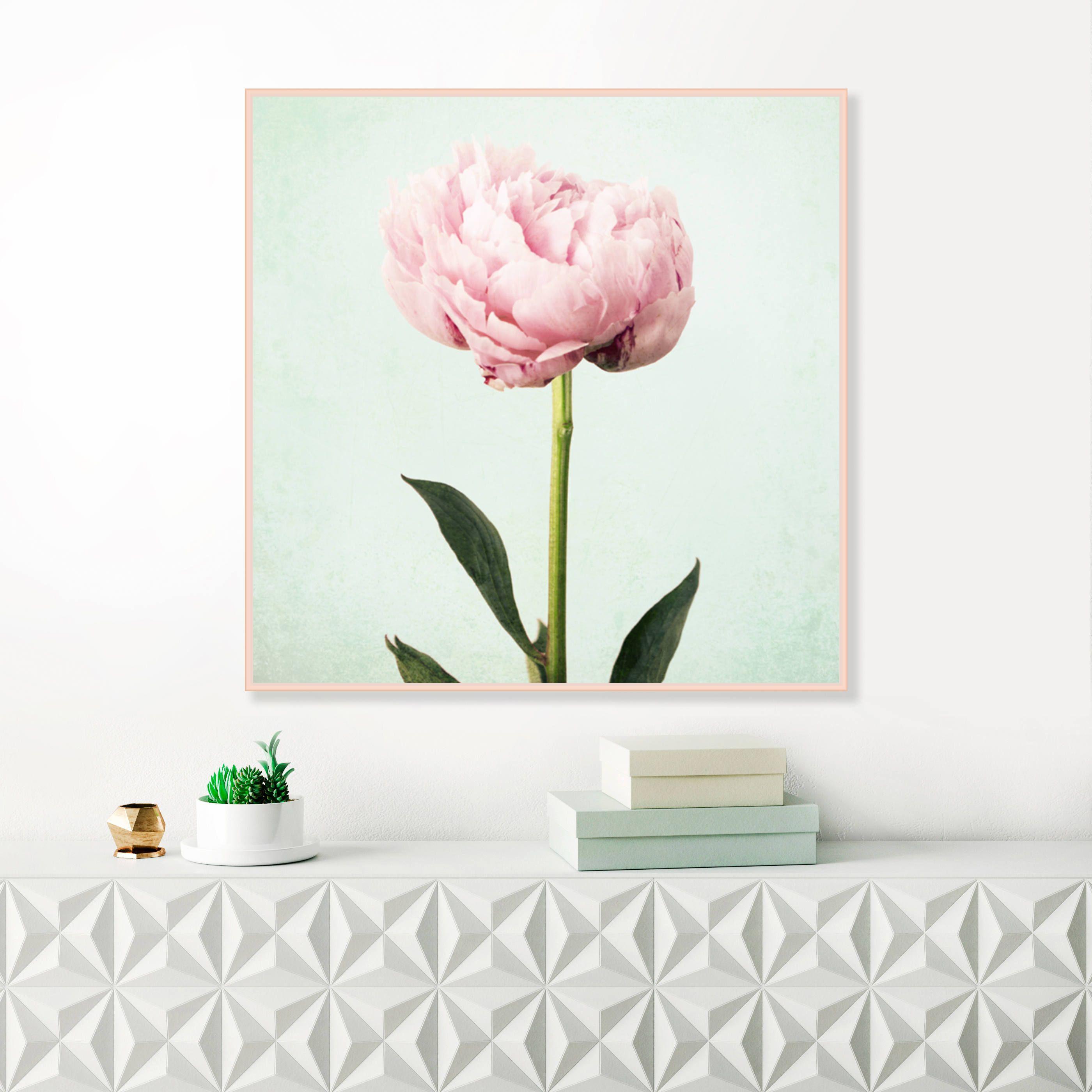Botanical print set set of 3 prints agave prints bathroom wall