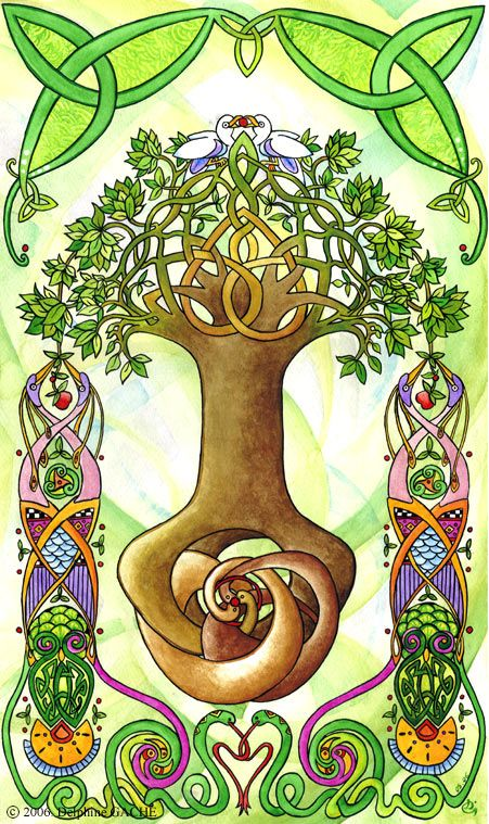 Delphine Gache L Arbre De Vie Spirit My Celtic Heart Tree