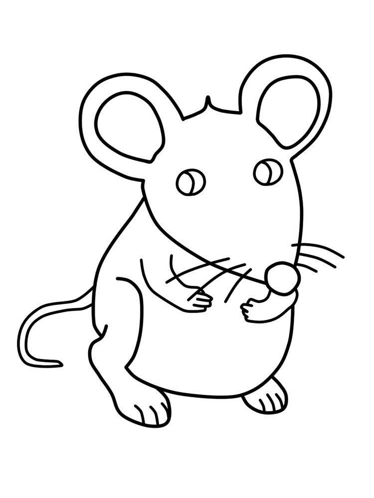 Cartoon Mouse Coloring Page Animais Desenho Desenhos