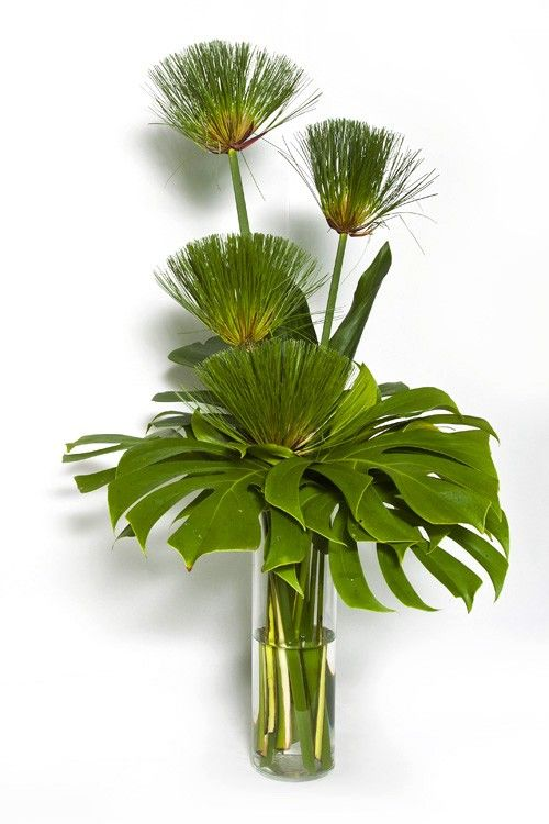 Arranjo De Mesa Verde Decoracion Arranjos De Flores Tropicais