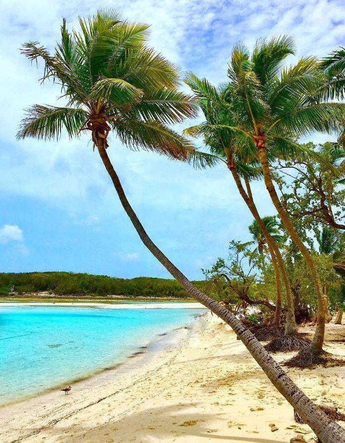Blue Lagoon Island Bahamas Exuma Bahamas Bahamas Island