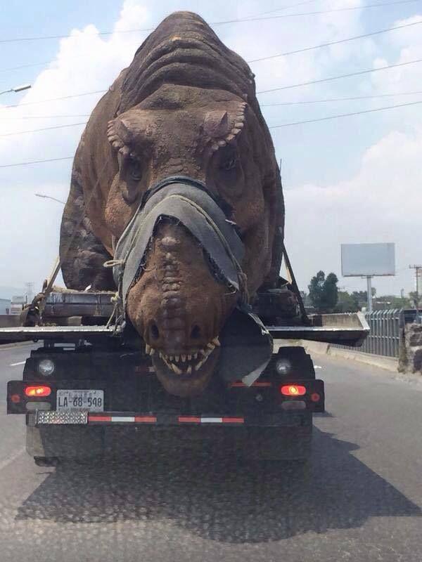 dinosaurio suelto