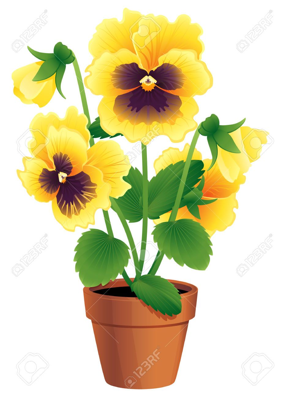 potted plant png vector art Google Search Fiori