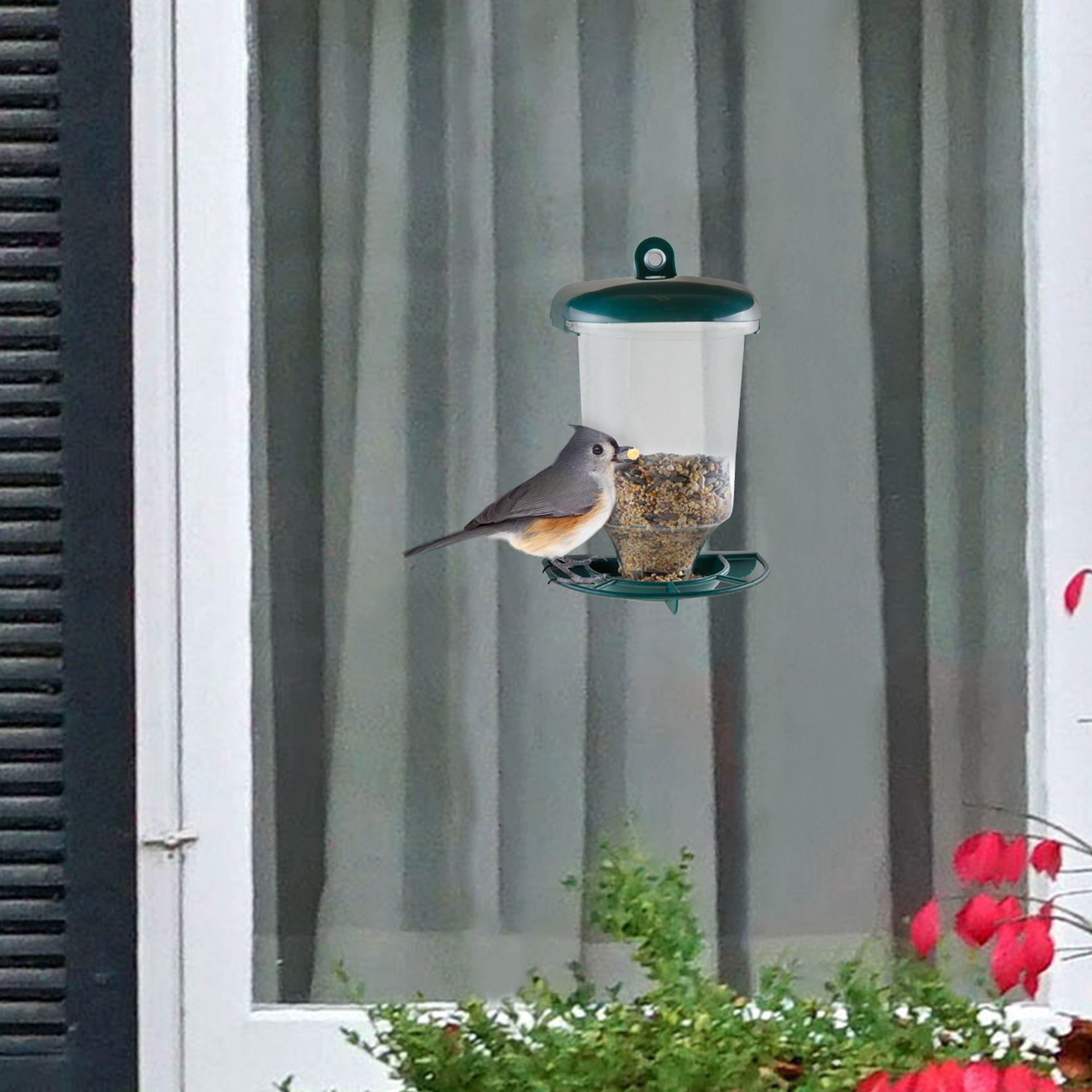 Pure Garden Window Bird Feeder Window bird feeder, Pure