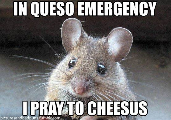 In queso emergency...