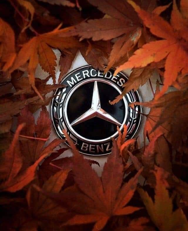Black Key Chain AMG Mercedes=Benz Key Chain AMG 3D LOGO Mercedese Benzz Stainless Keychain Keyring