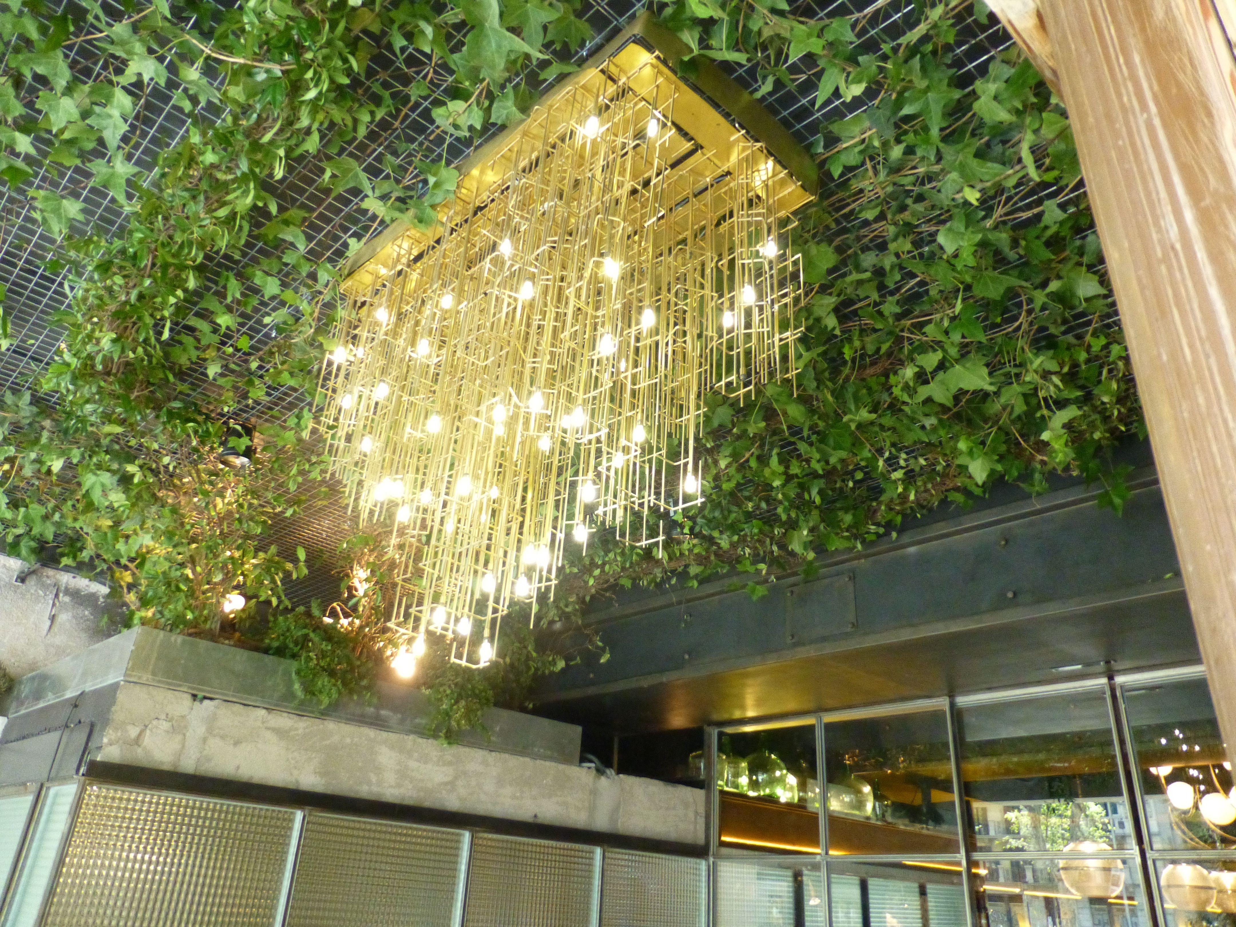 Techo Tapizado De Plantas A La Entrada Al Restaurante