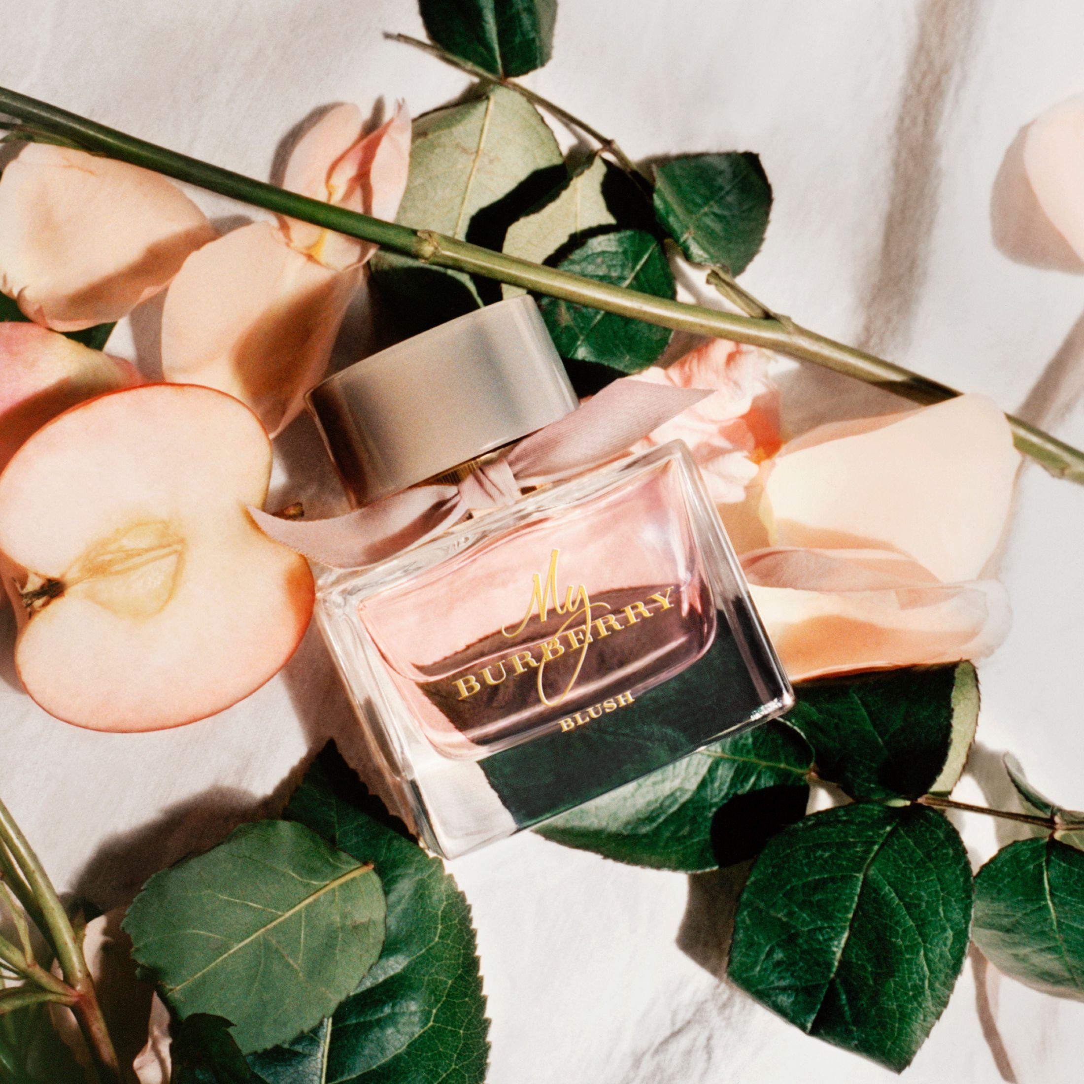 30ml Parfum Women Burberry Blush My In Eau Color De 2019감성 QrtdxsCh
