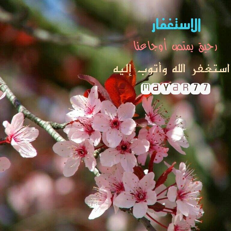 الاستغفار يمتص رحيق أوجاعنا و يهدينا الامل دون مقابل استغفر الله العظيم Islam
