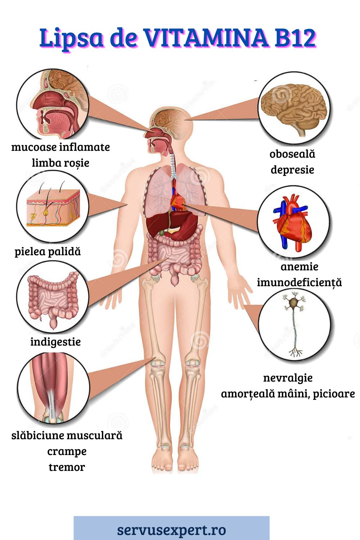 varicoză simptomele organelor interne îndepărtarea varicoz stripping