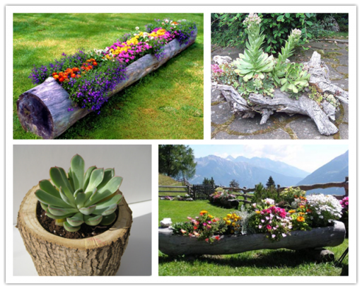 Making a Log Planter for Flowers Garden planters Planters and Logs