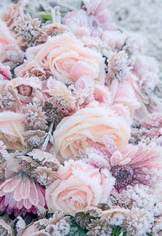 on We Heart It Phone wallpapers tumblr, Tumblr wallpaper