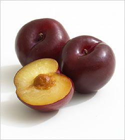 Red Beauty Plum Scientific Binomial Name Prunus Domesticus Usage