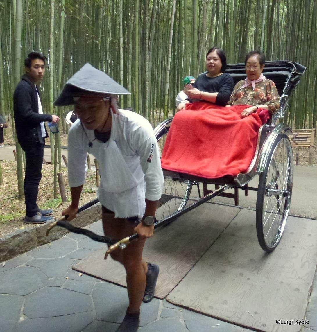 L' uomo del riksciò... by L.Spagnolo - Kyoto, foresta di bambù.