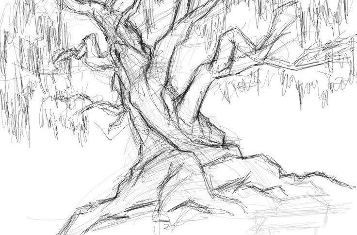 Inilah 9 Arti Menggambar Pohon Saat Psikotes Kumpulan Contoh Soal Psikotes Gambar Cara Menjawabnya Ki Tips Wartegg Tes Ini Di 2020 Gambar Realistis Sketsa Gambar