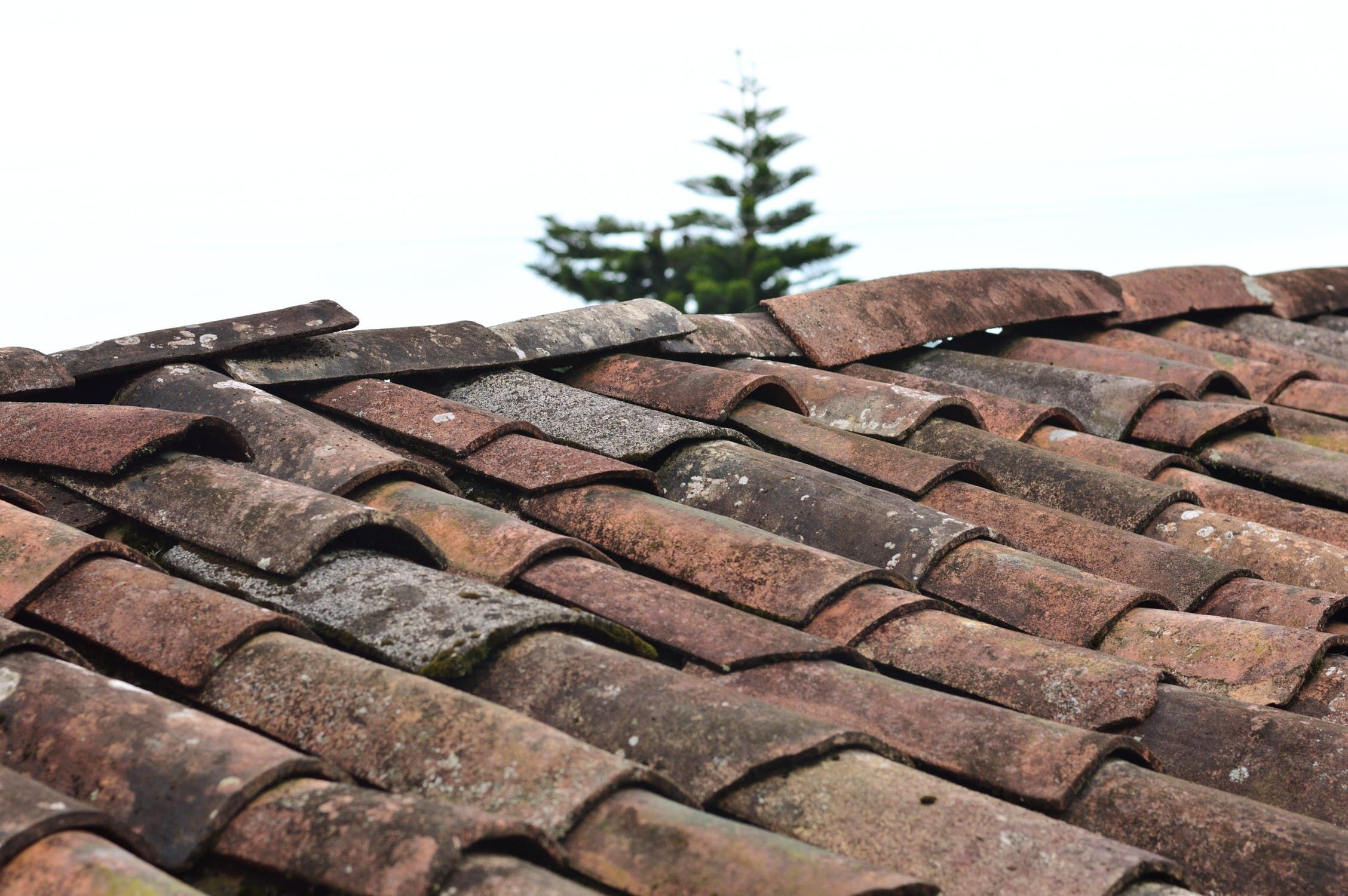 Though Re Roofing Is Not A Glamorous Home Renovation But Is Undoubtedly A Crucial One In Case Of Installing A New Ro Roof Problems Roofing Roofing Contractors
