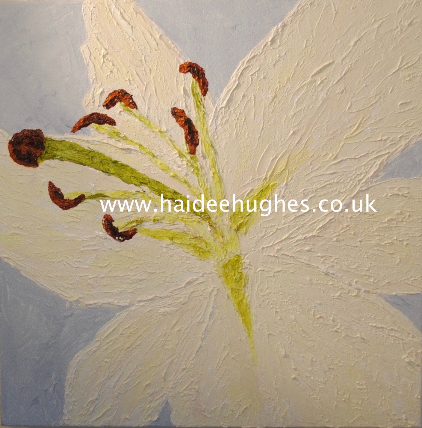 Bespoke White Lily Flower, Original Oil Painting on Canvas, Wall Art ...