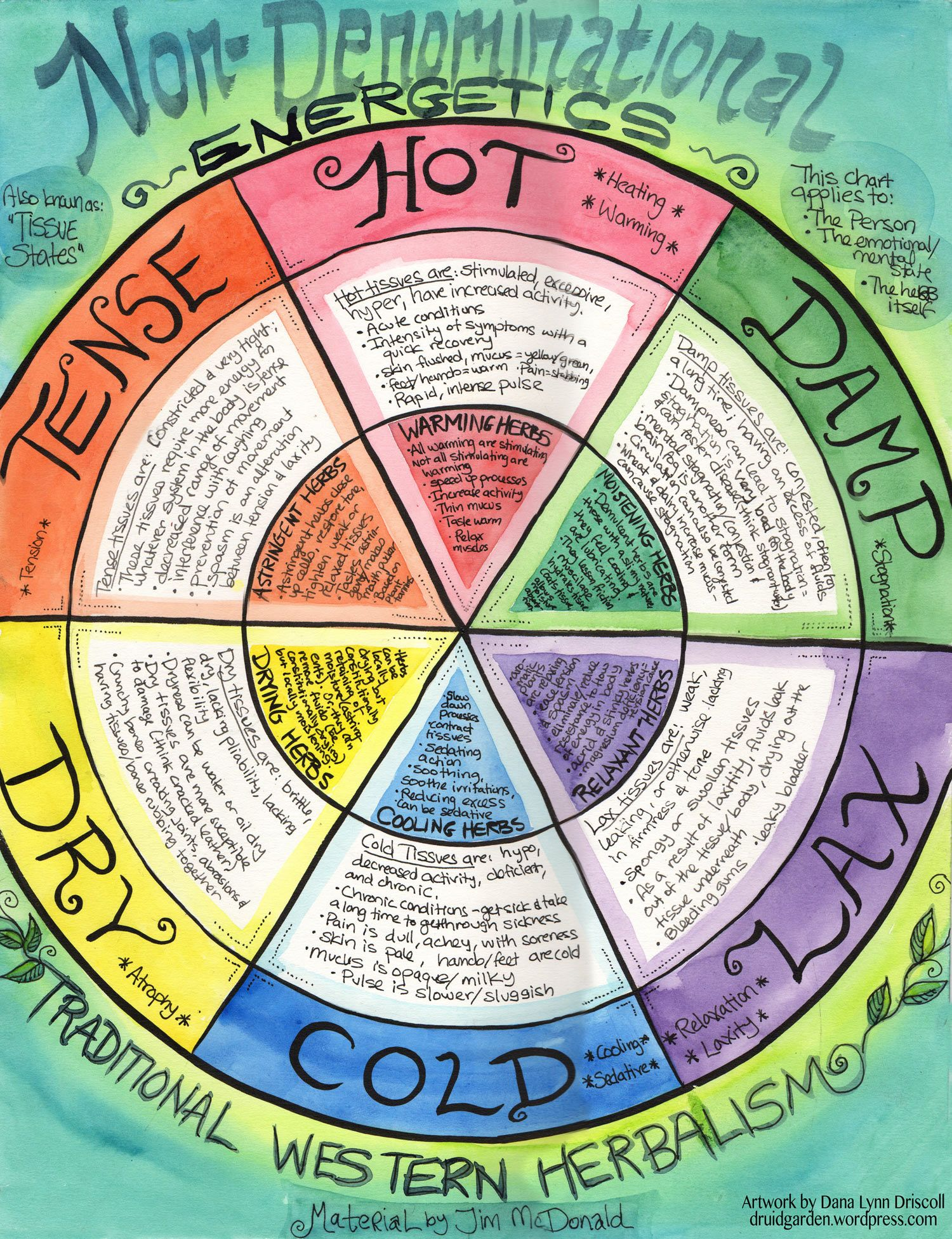 Energetics And Tissue States Wheel Traditional Western Herbalism