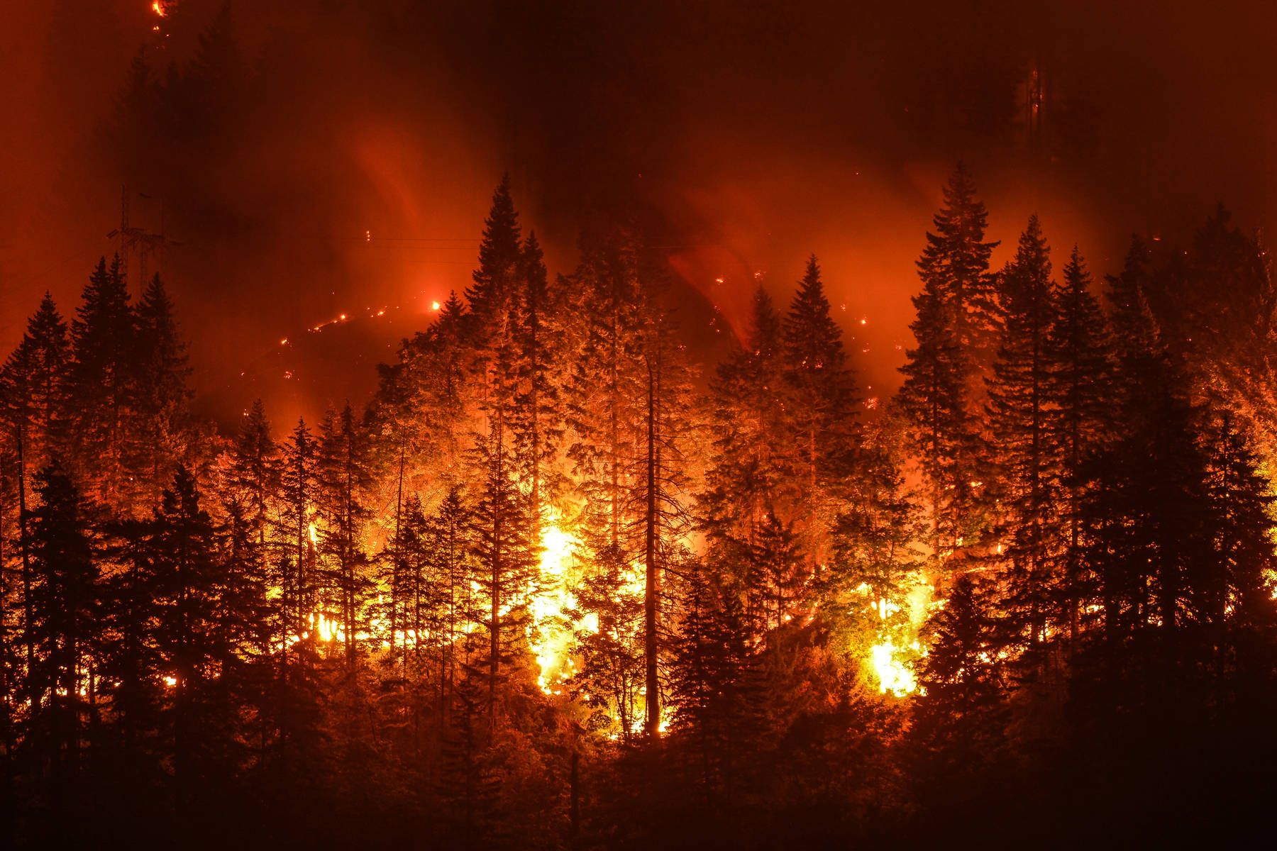 Pin By Jeremiah Nolte On Nature California Wildfires Forest Fire Natural Disasters