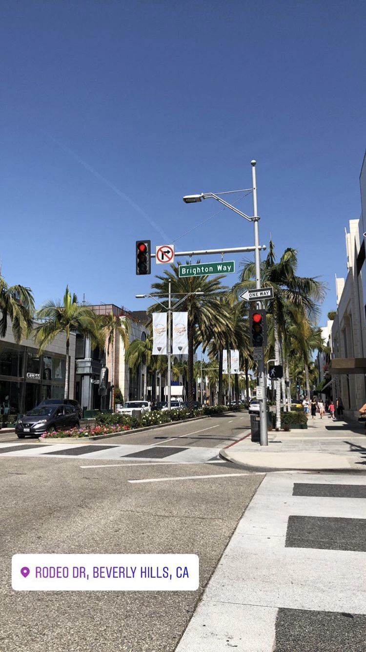 Rodeo Drive Beverly Hills California Los Angeles Palm