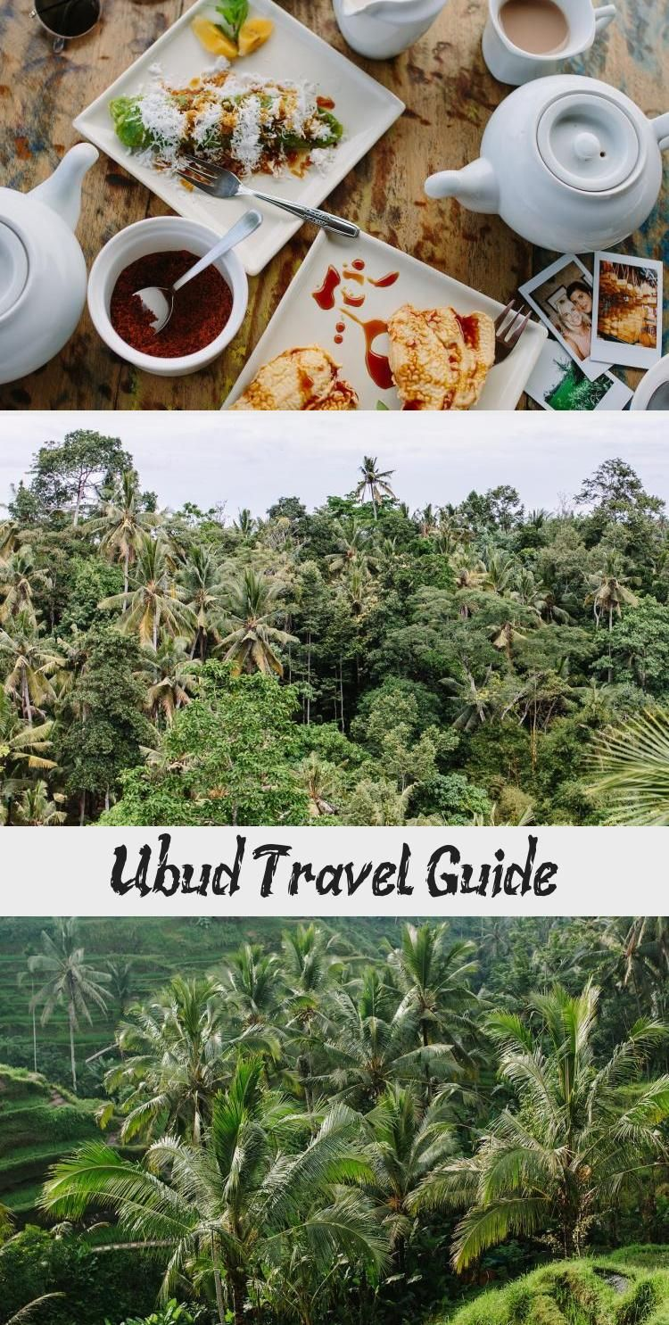 To kick off the series of guides I'll be doing as part of our recent creative escape, I wanted to start with Ubud. Although not the first place we visited, Ubud really stood out as such a gorgeous, relaxing and creative hub. Somewhere that you simply must put on your list if you plan to […] Read More  #TravelGirl #TravelWallpaper #TravelPhotos #TravelMap #TravelCouple
