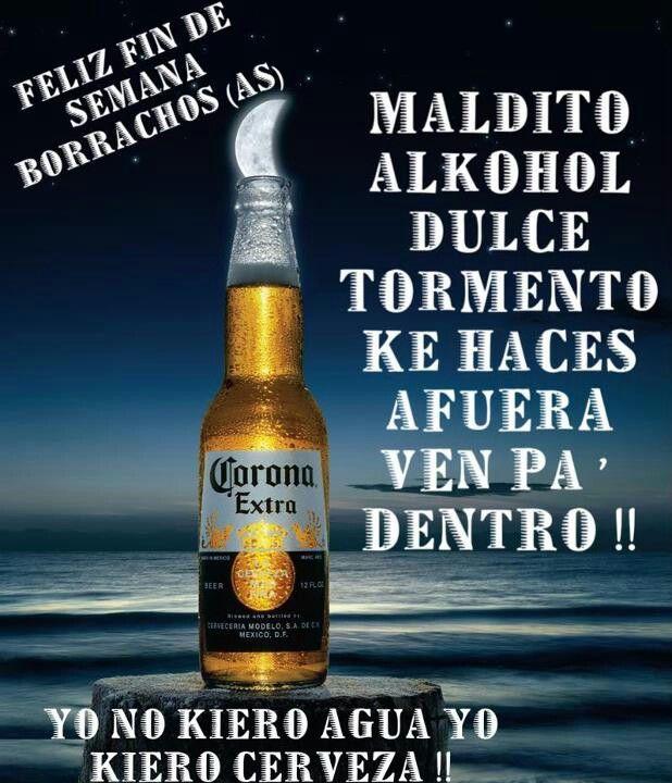 Borrach S Beer Humor Tequila Beer Beer Memes