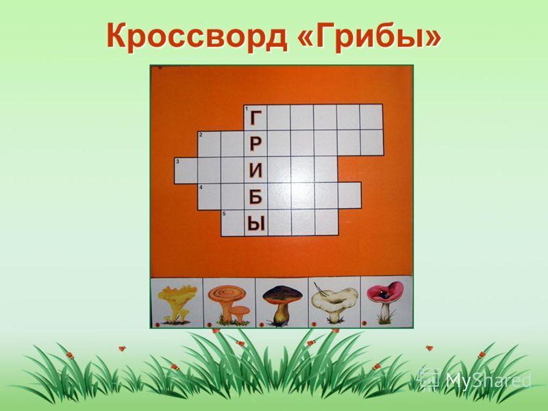 Гдз по физике, геометрии, русскому языку