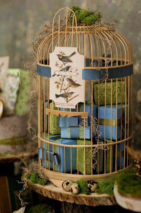 Bird cages ... I like the picture card of birds on the outside of the cage
